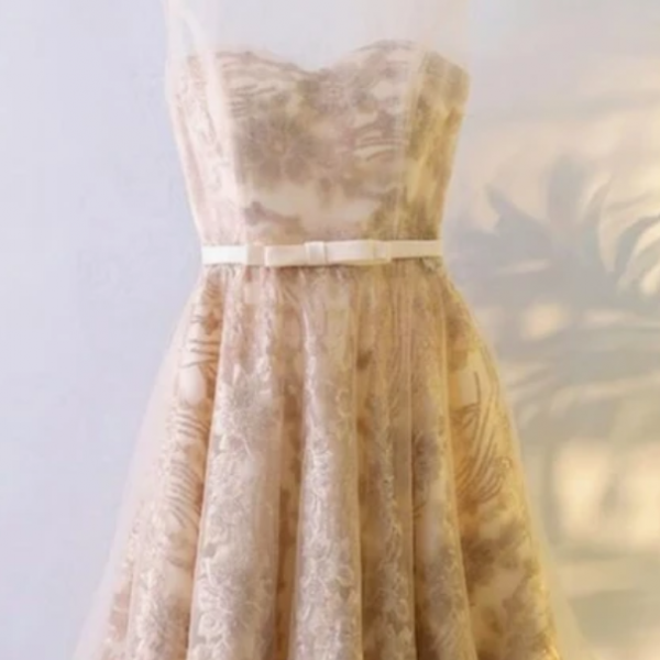 A-Line Boat Neck Knee-Length Champagne Tulle Homecoming Dress with Lace